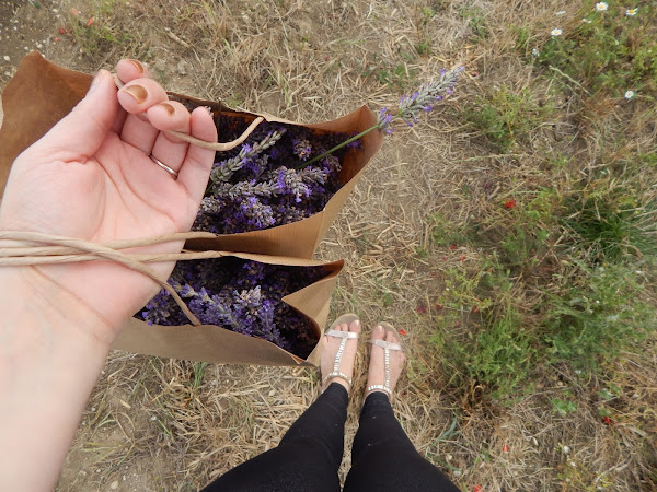 Lavender Fields OOTD