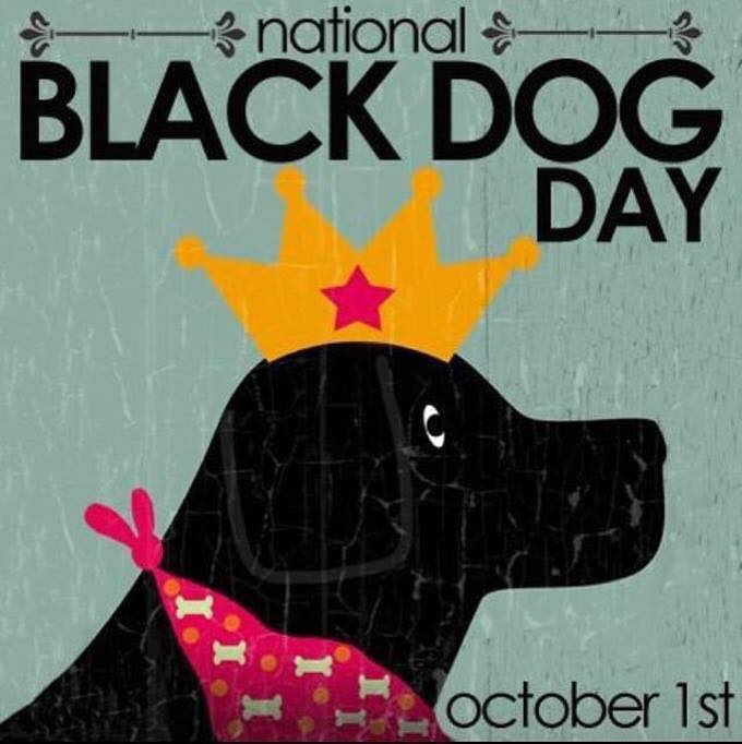 National Black Dog Day Wishes Awesome Images, Pictures, Photos, Wallpapers