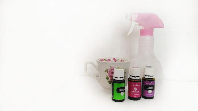 Cara buat spray penghalau serangga paling selamat