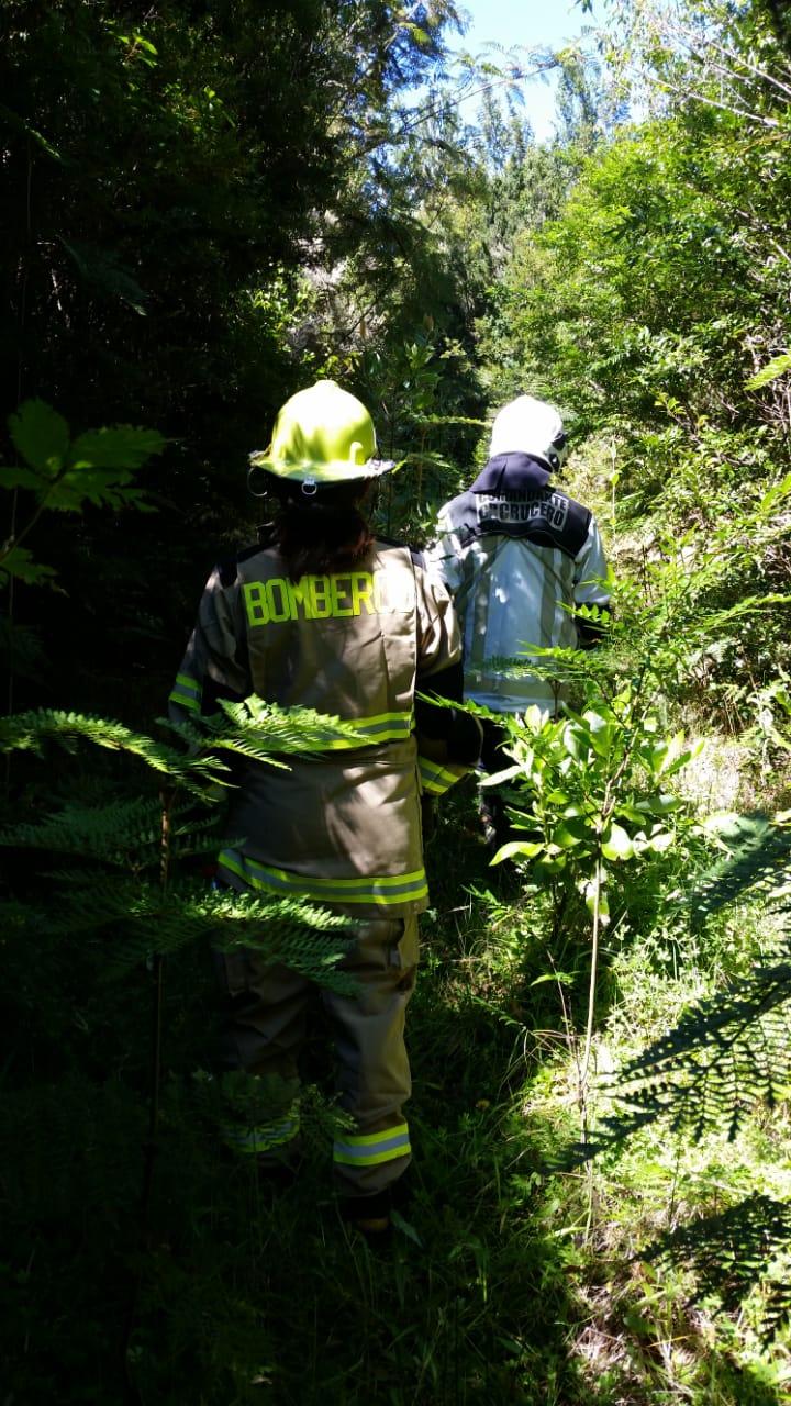 Voluntarios de bomberos