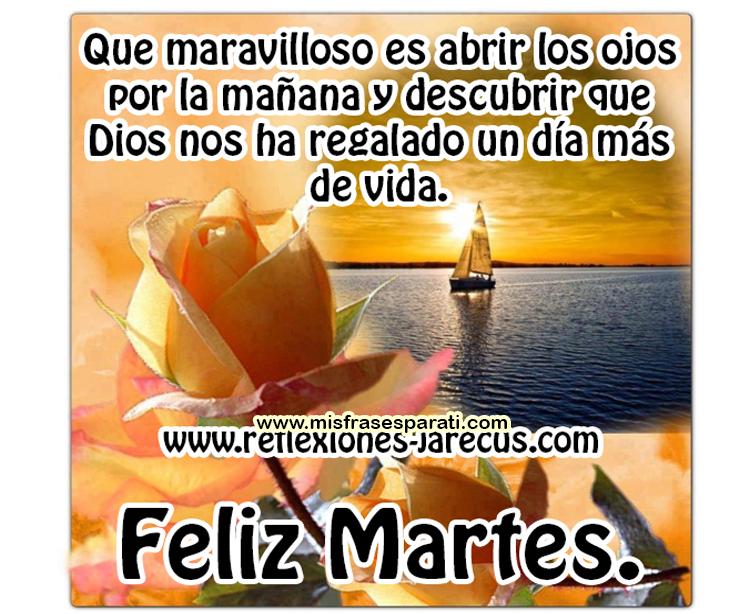 Feliz miércoles✅Que maravilloso es abrir los ojos por la mañana y descubrir que Dios nos ha regalado un día más de vida.