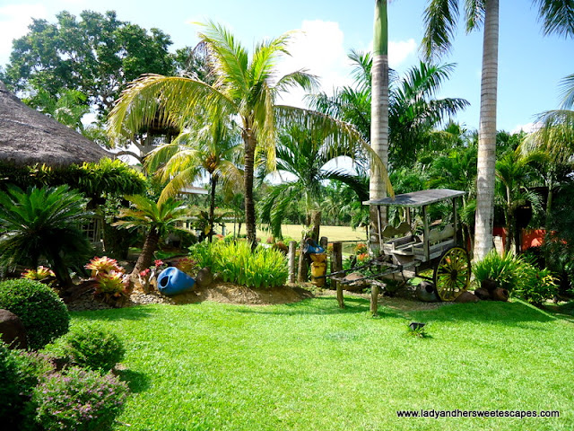 nature backdrop at Rafael's Farm Leyte