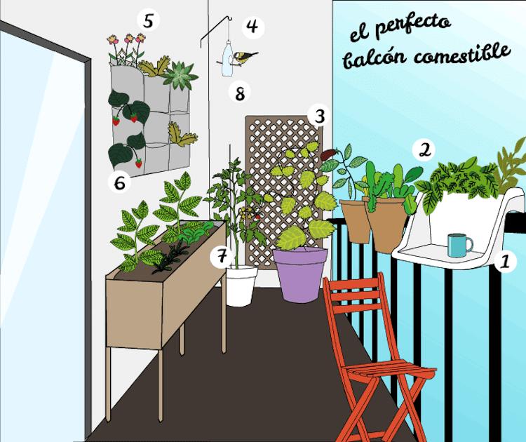 distribución de un balcón con plantas comestibles