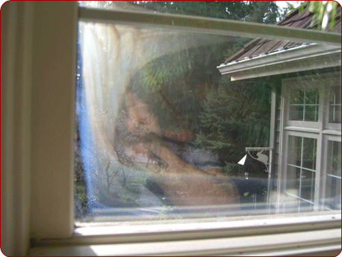 Seal Failure In Windows Seattle Redmond Issaquah Wa