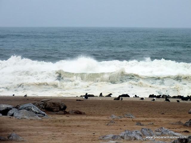 olas costa namibia