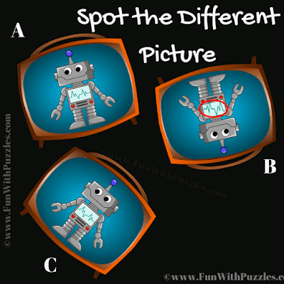 Answer of Spot the Different Bot Picture Puzzle for Kids