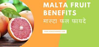malta fruit benefits माल्टा फल फायदे
