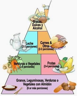 Dieta varias comidas al dia