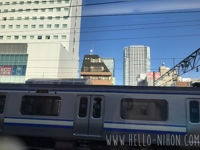 View from the Narita Express NEX