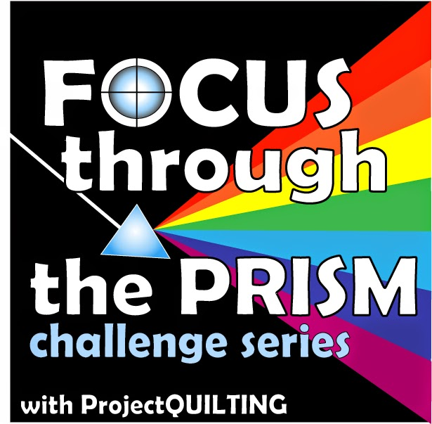 Focus Through the Prism Challenge