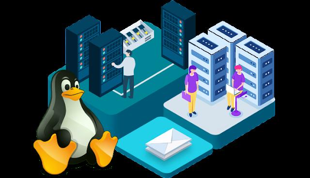 Linux Hosting, Web Hosting Review, Web Hosting, Compare Web Hosting