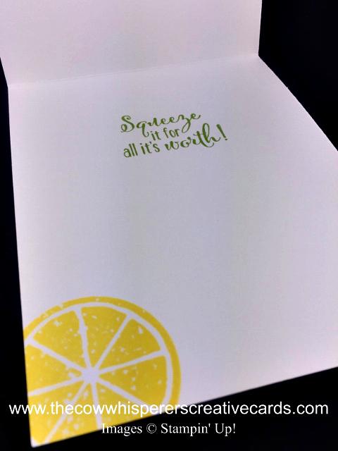 Card, Lemon Zest, Leaf Ribbon, Petal Pair Embossing Folder,