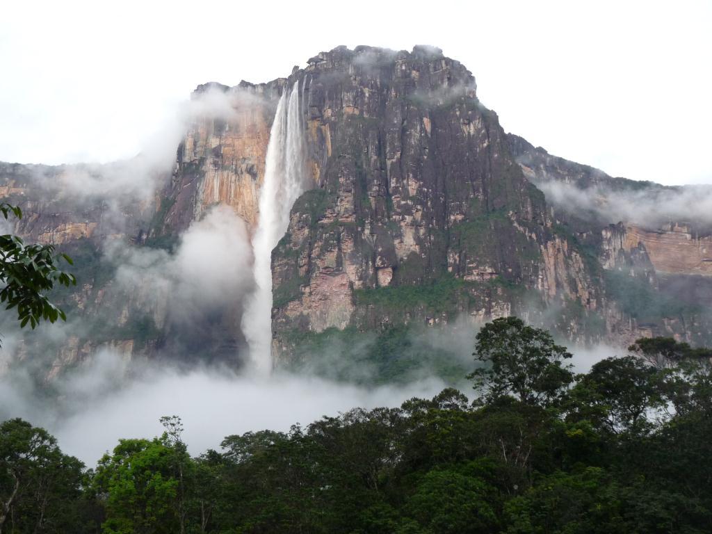 россии венесуэла водопад анхель фото поведение тани привело