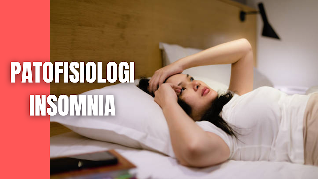 "Patofisiologi Insomnia Pada Manusia Tidur merupakan suatu ritme biologis yang bekerja 24 jam yang bertujuan untuk mengembalikan stamina untuk kembali beraktivitas. Tidur dan terbangun diatur oleh batang otak, thalamus, hypothalamus dan beberapa neurohormon dan neurotransmitter juga dihubungkan dengan tidur.   Hasil yang diproduksi oleh mekanisme serebral dalam batang otak yaitu serotonin. Serotonin ini merupakan neurotransmitter yang berperan sangat penting dalam menginduksi rasa kantuk, juga sebagai medula kerja otak.  Dalam tubuh serotonin diubah menjadi melatonin yang merupakan hormone katekolamin yang diproduksi secara alami oleh tubuh. Adanya lesi pada pusat pengatur tidur di hypothalamus juga dapat mengakibatkan keadaan siaga tidur.   Katekolamin yang dilepaskan akan menghasilkan hormone norepineprin yang akan merangsang otak untuk melakukan peningkatan aktivitas.  Stress juga merupakan salah satu factor pemicu, dimana dalam keadaan stress atau cemas, kadar hormone katekolamin akan meningkat dalam darah yang akan merangsang sistem saraf simpatetik sehingga seseorang akan terus terjaga.    Nah itu dia bahasan dari patofisiologi insomnia pada manusia, melalui bahasan di atas bisa diketahui mengenai patofisiologi insomnia pada manusia. Mungkin hanya itu yang bisa disampaikan di dalam artikel ini, mohon maaf bila terjadi kesalahan di dalam penulisan, dan terimakasih telah membaca artikel ini.""God Bless and Protect Us"""