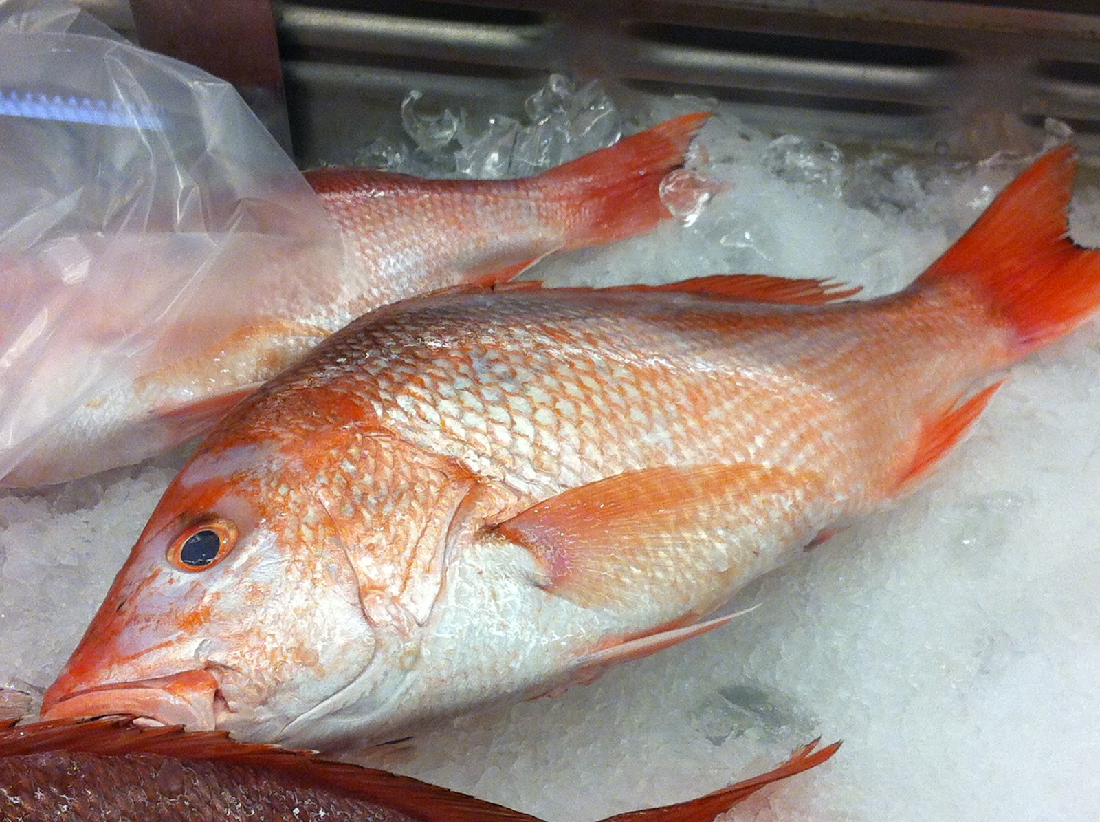 Statistical [R]ecipes: Cooking Whole Red Snapper