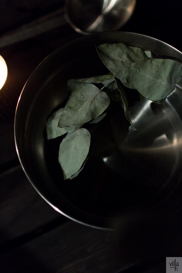 sauna, eukalyptus