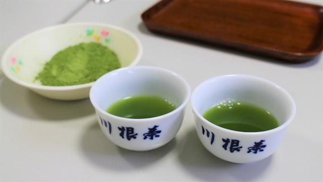 Dégustation de thé ryokucha - Sasama