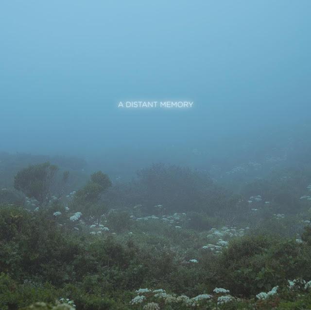 Musica Per Aperitweevi - novembre 2020 - Immagine di Victoria Siemer