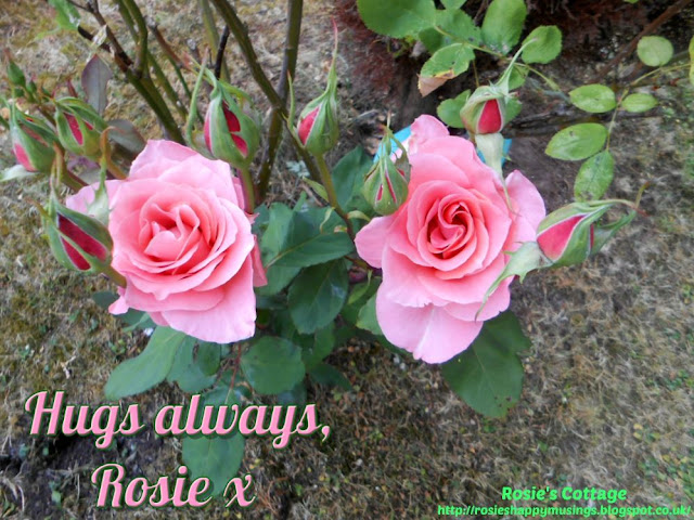 Hugs always, Rosie x