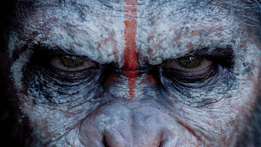 Podcast Episode 22: Bow Down Before Your Ape Overlords At The DAWN OF THE PLANET OF THE APES