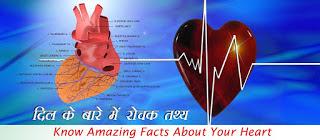 दिल के बारे में रोचक तथ्य, dil ke bare me rochak tathya, Heart Facts in Hindi, दिल के रोचक तथ्य, हृदय के तथ्य, Heart Facts
