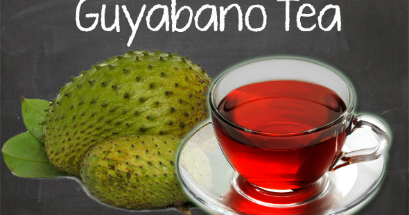 guyabano for cancer Soursop cancer cure the science confirms that the properties of this soursop are the answer to humanities most notorious problem in the field of health they have proven that the.