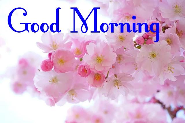 GOOD MORNING,