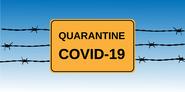 How to make the most of Quarantine!