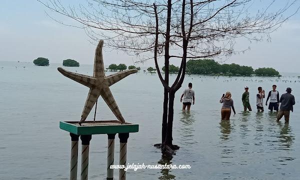 aktivitas selama wisata pulau pari