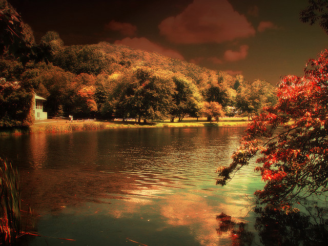 Fall Flower Computer Wallpaper The Most Beautiful Autumn Break Destinations In The World