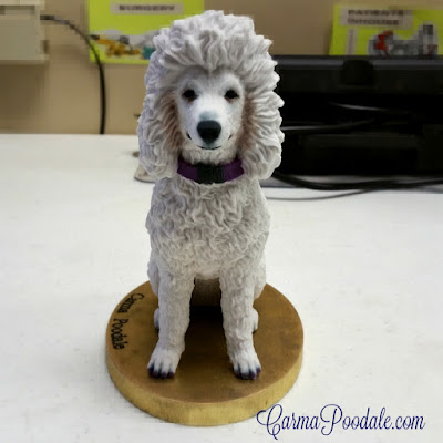 Life like Statue of Carma Poodale, white poodle in 3D