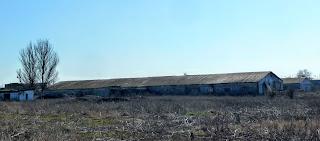 Посёлок Удачное. Заброшенные фермы для крупного рогатого скота