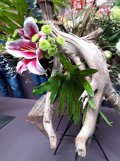 bonsai, ikebana, suiseki exhibit