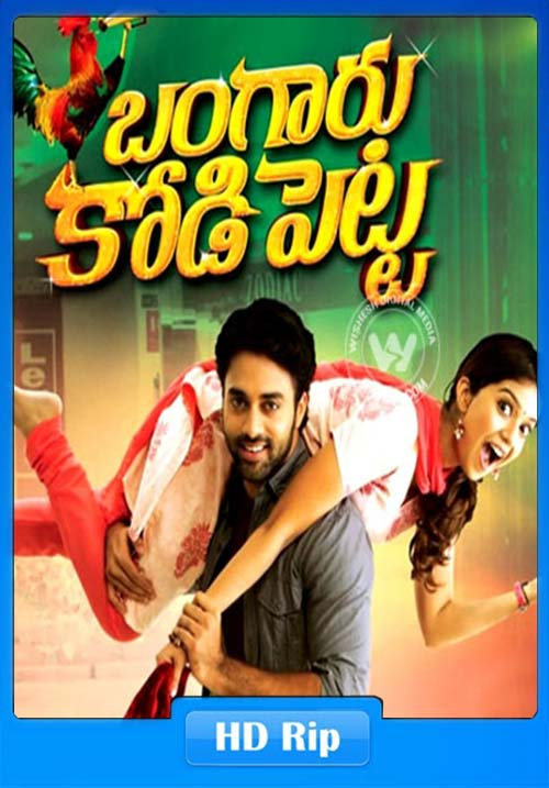 Bangaru Kodipetta 2019 Hindi Dubbed 720p WEB-HD | 480p 300MB | 100MB HEVC