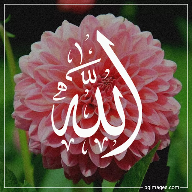 allah images for whatsapp