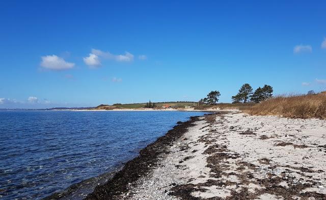 Ein Inselausflug nach Kegnæs. Der langgestreckte Strand bei Sonderby ist kinderfreundlich.