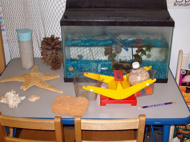 Topics In Early Childhood Education Science Of Discovery