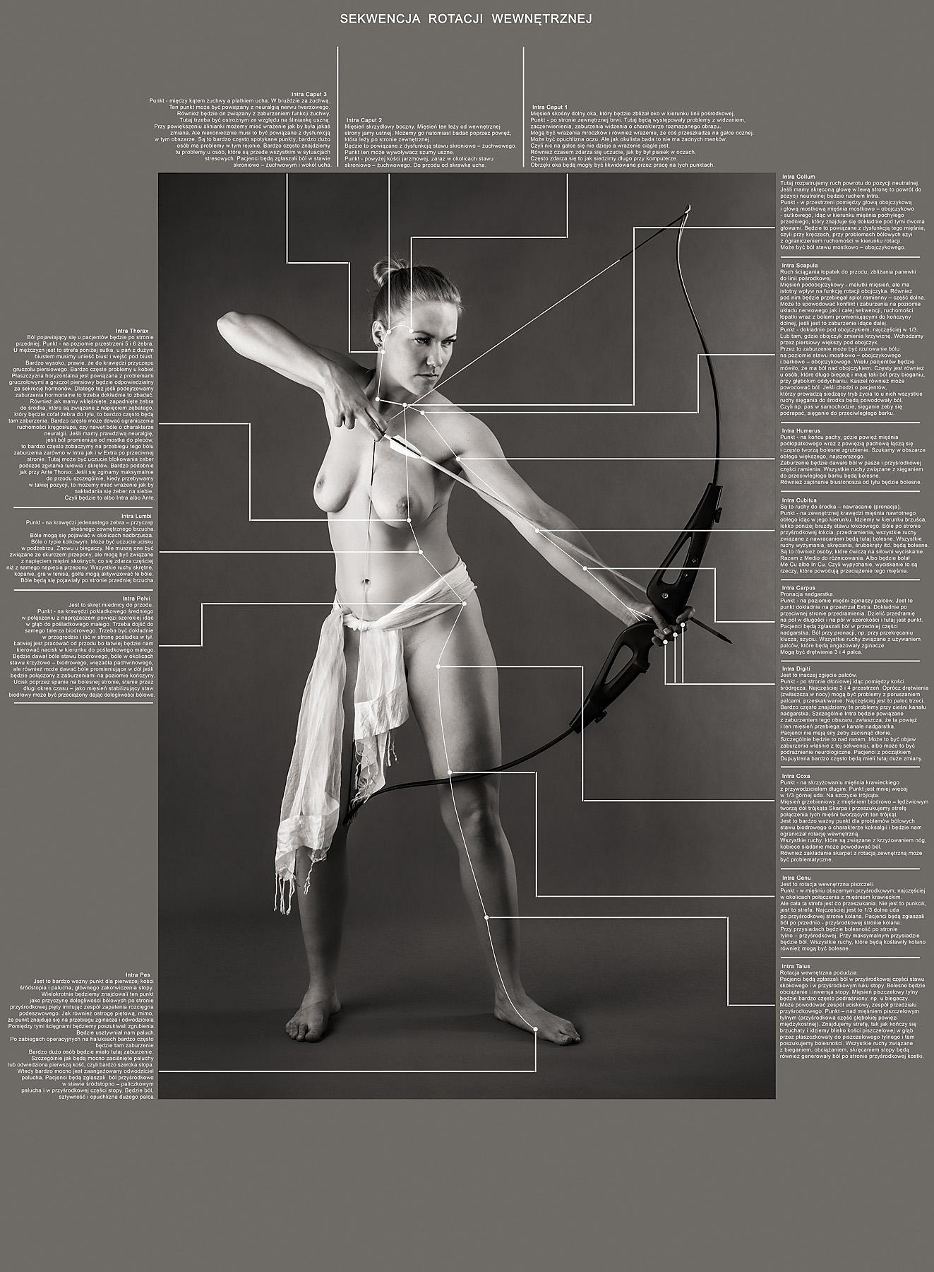 Fotografie, grafika, opracowanie dla Fizjosfera