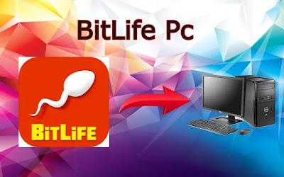 BitLife Pc