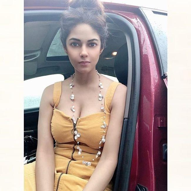 Actress Meera Chopra Latest Hot Photos