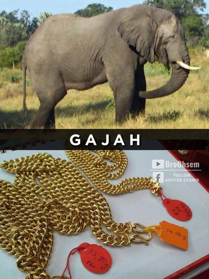Gelang Emas Gajah