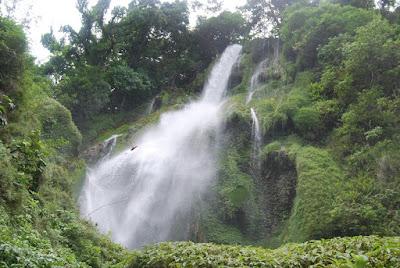 Taman Nasional Laiwangi Wanggameti Sumba, Menyimpan sejuta Flora & Fauna
