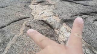Formações rochosas que contém ouro