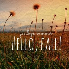 Sadly Saying Goodbye To Summer