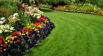 Well maintained garden and lawn - www.leovandesign.com