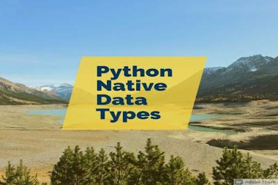 Python Five Key Native Data Types