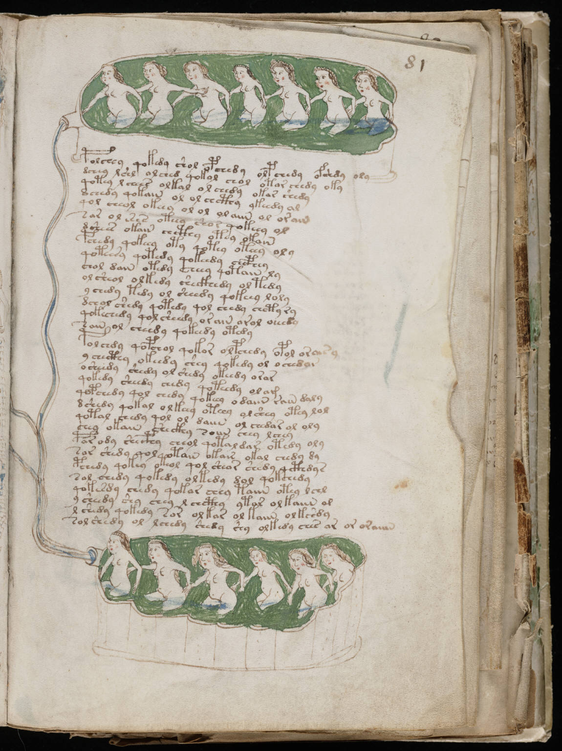 manuscrito145
