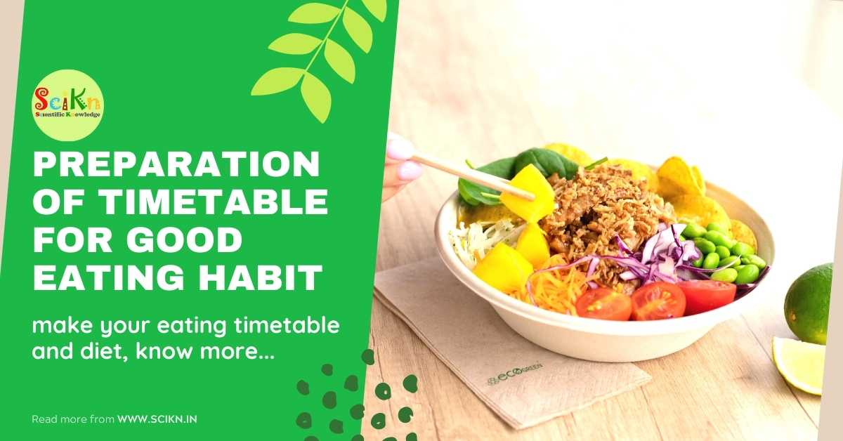 timetable for good eating habit