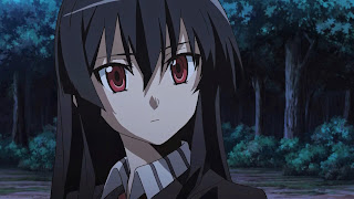 Akame to jedna z głównych bohaterek Akame Ga Kill - dziewczyna ma czarne włosy i czerwone oczy