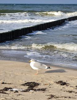 Barfuß am Strand und ein paar Worte ... Blog: Silke schreibt